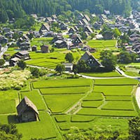 сельских территорий